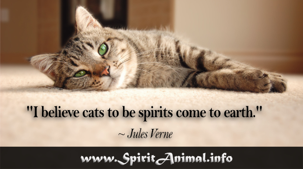 Quotes About Cats | Cat Quotes