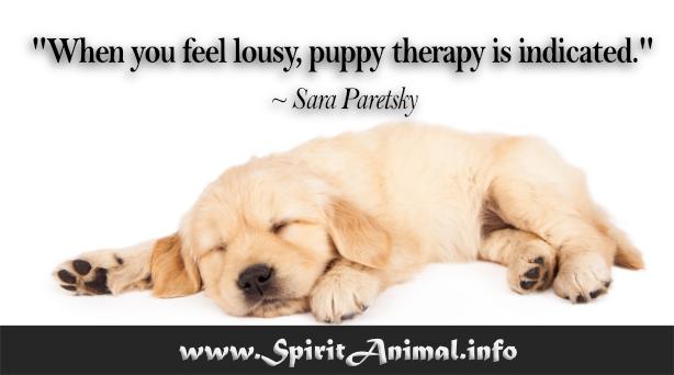 Dog Quotes - Spirit Animal Info