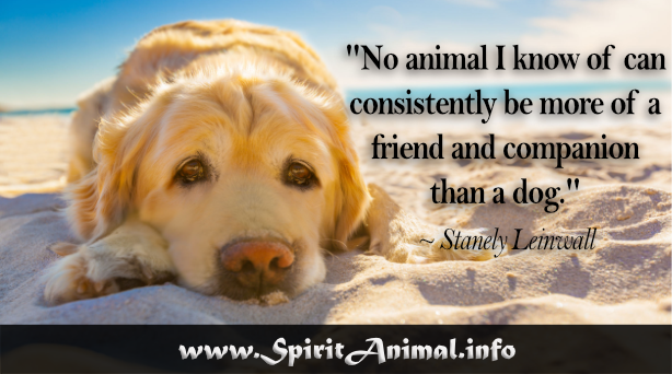 Dog Quotes | Dog Quotes