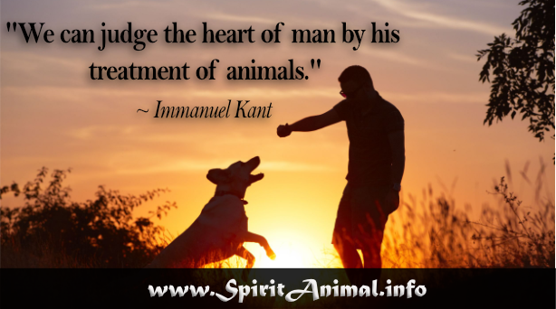 Dog Quotes - Spirit Animal Info