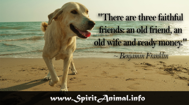 Famous Dog Quotes - Spirit Animal Info
