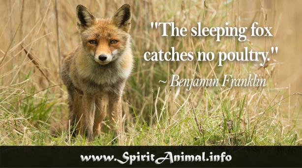 Fox Quotes