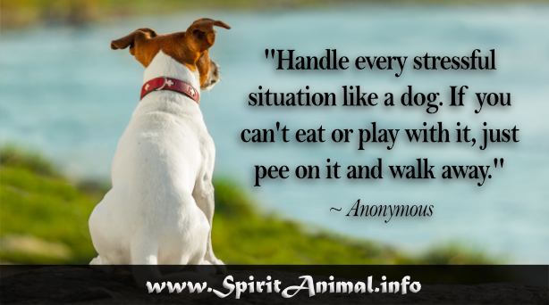 Funny Dog Quotes Spirit Animal Info