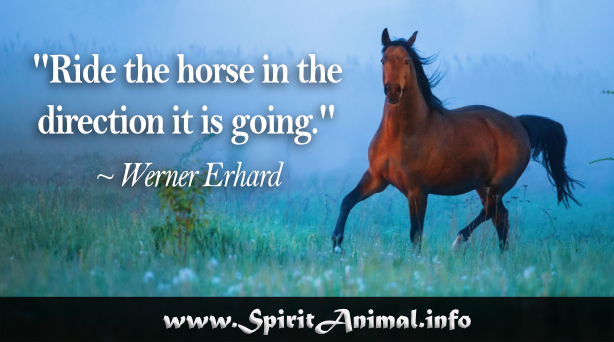 Horse Quotes Spirit Animal Info