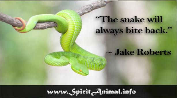 Snake Quotes Snake Quotes   Snake Quotes