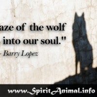 Wolf Quote 11