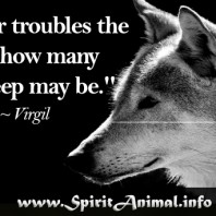 Wolf Quote 9