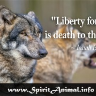 Wolf Quote 8